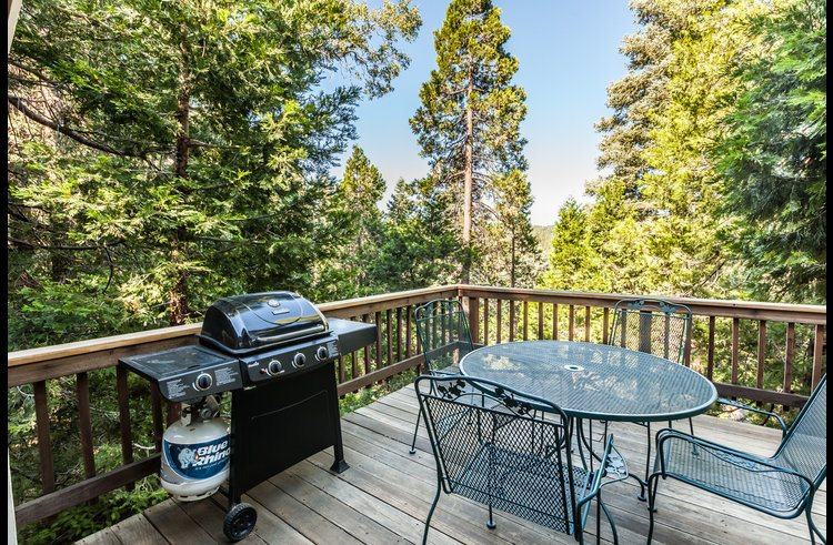 Gas BBQ and patio furniture for outdoor entertainment