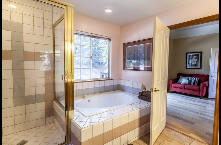 Master bath with jacuzzi tub and separate shower